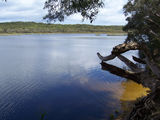 Picture of / about 'Fraser Island' Queensland - Fraser Island