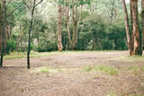 Picture relating to Taponga River - titled 'Taponga River Camp Ground'