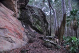 Picture relating to Carnarvon Gorge - titled 'Baloon Cave walk'