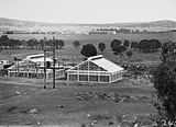 Picture relating to Black Mountain - titled 'CSIR Insectarium and building under construction, Clunies Ross Street, Black Mountain. Civic Centre buildings at the rear.'
