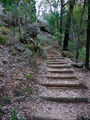 Picture relating to Warrumbungle National Park - titled 'Fan's Horizon Walking Trail'