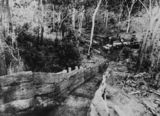 Picture of / about 'Mount Morgan' Queensland - Iron shute from the mountain top at Mount Morgan, Queensland, ca.1883
