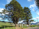 Picture relating to Gunns Plains - titled 'Gunns Plains'