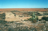 Picture of / about 'Sturt National Park' New South Wales, Queensland and South Australia - Sturt National Park