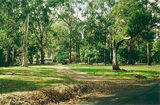 Picture relating to Poowong - titled 'Poowong; Bass Valley camp ground'