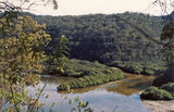 Picture relating to Berowra Waters - titled 'Calabash Bay, Berowra Waters'