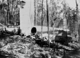Picture of / about 'Moogerah' Queensland - Plane crash on Jurgensen's property at Moogerah in Febraury 1929
