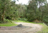 Picture relating to Strezelecki State Forest - titled 'Strezelecki State Forest; Bulga Quarry bush camp'