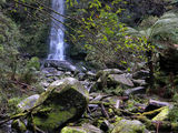 Picture relating to Erskine Falls - titled 'Erskine Falls'