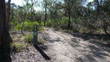 Picture of / about 'Jerrara Lookout' New South Wales - Walking track to Jerrara Lookout
