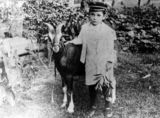 Picture relating to Irvinebank - titled 'Billy Sheppard and his goat, Brownie'