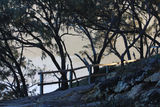 Picture relating to North Stradbroke Island (Minjerriba) - titled 'North Stradbroke Island (Minjerriba)'