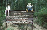 Picture relating to Big Nellie - titled 'Big Nellie Signboard'